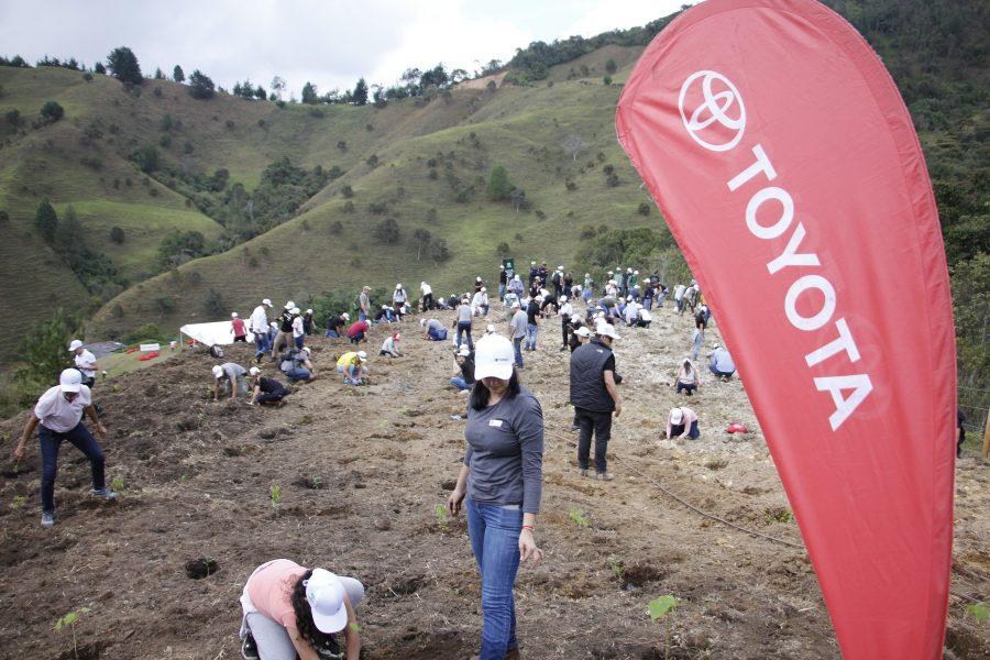 Toyota sigue con sus jornadas ambientales 2