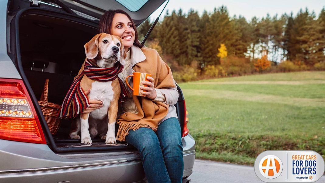Top 10 de los mejores vehículos para perros